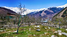Family Holiday in Manali