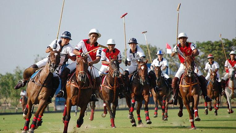 Jodhpur Polo
