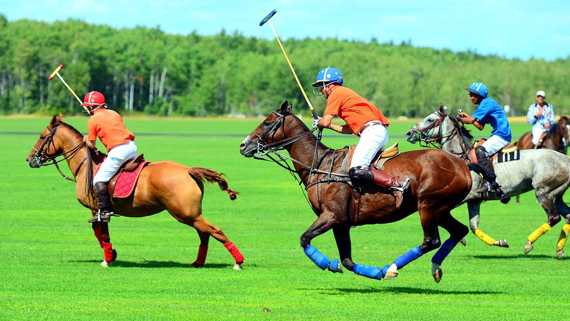 Top 20 Destination in India for Polo Players