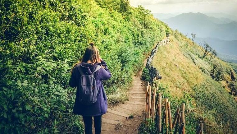 Kasauli Nature Walk