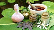 Ayurveda Holiday Packages