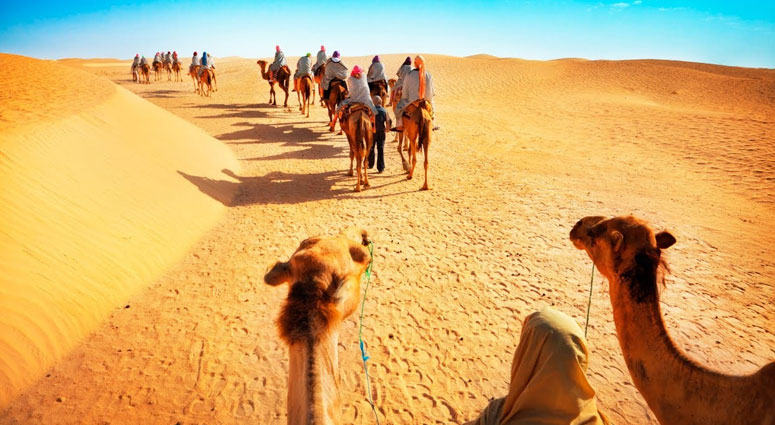Camel-Safari-in-the-Arabian-Desert