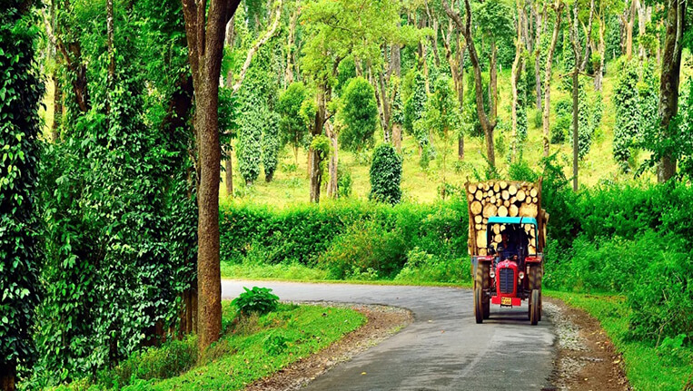 Picturesque Hill Station Coorg, Karnataka