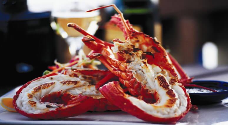Crayfish dish, new zealand