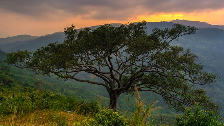 Haflong- An evening in the hills