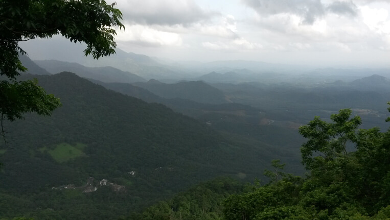 Lakkidi looking at nature from