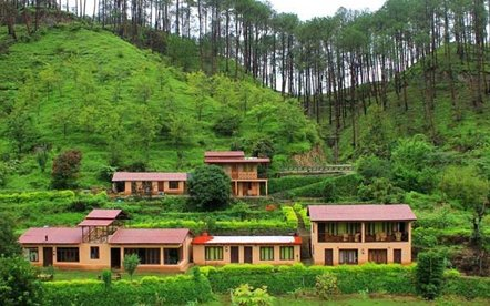 Image result for almora,nari