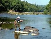 Angling & Fishing in Himachal