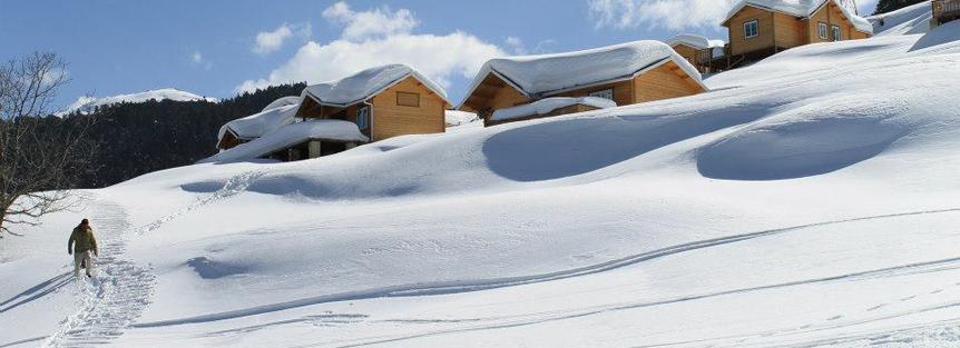 Auli Snow View