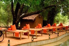 Hotels in Bandhavgarh National Park