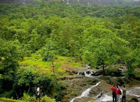 Bhimashankar Hill Station