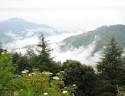 Chail Tourist Places