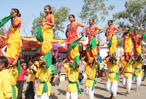 Dangs Darbar Festival