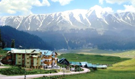delight-of-kashmir