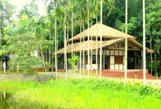 Infinity Resorts Kaziranga