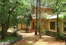 Krishna Jungle Resort