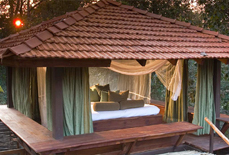 taj-baghvan-wildlife-resort