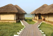 The Bison Kabini Resort