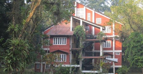 wild-grass-lodge-kaziranga