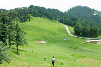Golf Course, Naldehra