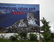 Himalayan National Park, Kufri