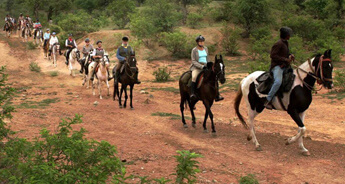 Rajasthan Horse Safari Tour