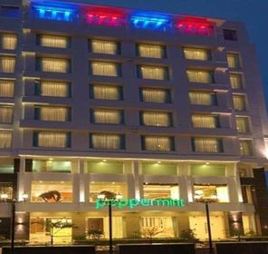 Hotel Peppermint Jaipur