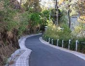 Lovers Lane, Kasauli