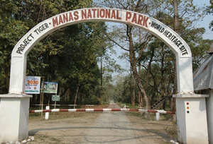 Manas National Park Safari, Assam
