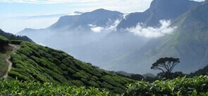 Munnar Tourist Attractions