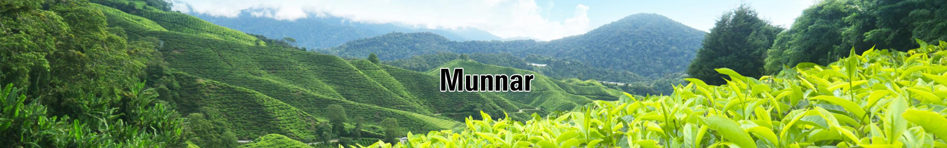 Munnar Hill Station Holiday Packages