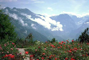 Mussoorie Tourist Attraction