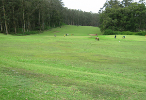 ooty-golf-course