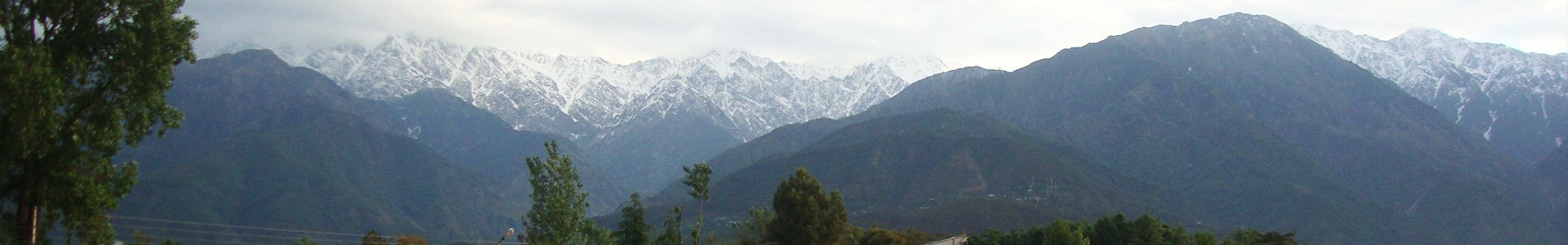 Andretta Artists Village Palampur, Himachal