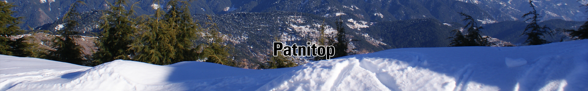 Hotel Holiday Inn Patnitop