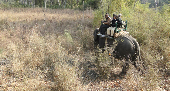 pench-national-park-tour