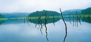 Periyar Tourist Attractions