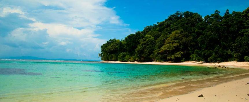 radhanagar_beach
