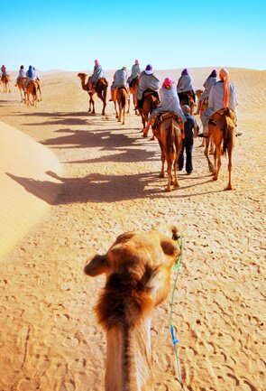 Rajasthan Adventure Tour