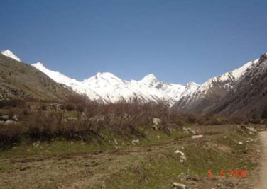 Sangla Meadows