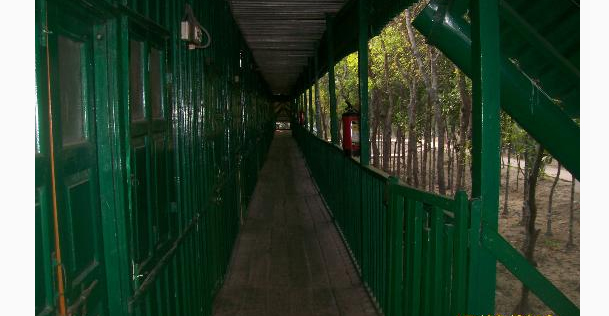 sunderban-cheetal-forest-lodge
