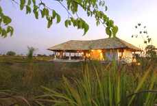 Hotels in Tadoba National Park