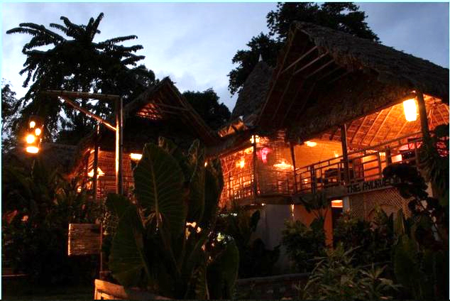Wild Orchid Resort Havelock Island, Andaman