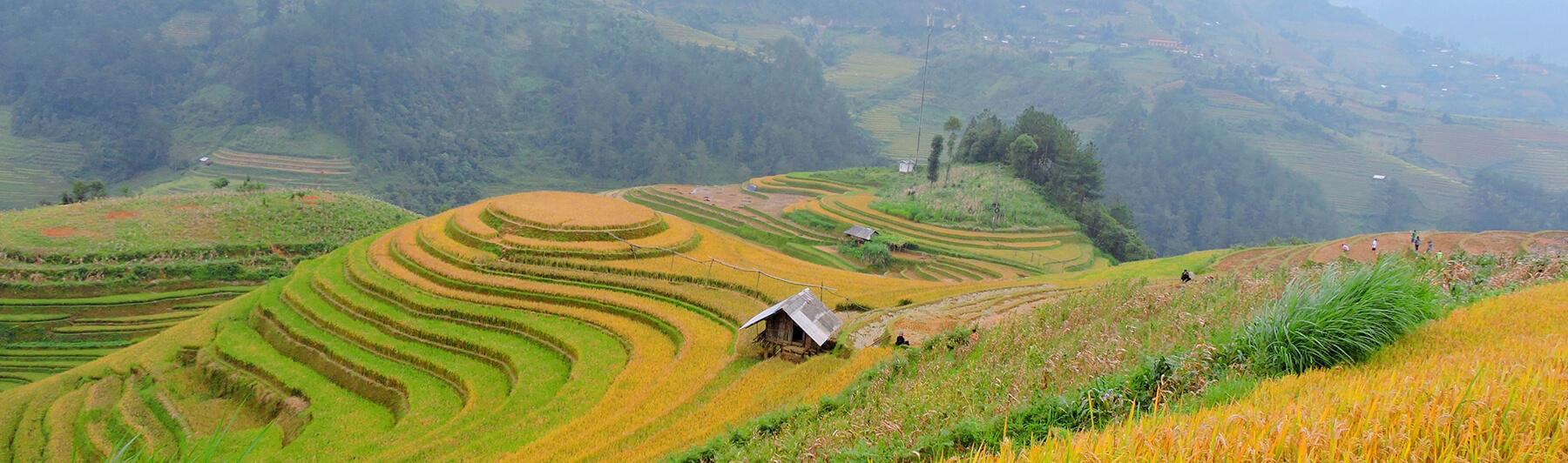 Majestic Vietnam