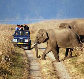 Delhi Corbett Weekend Package