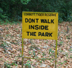 Symbol of Love with Jim Corbett