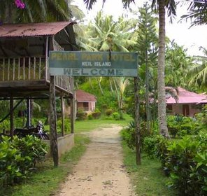 Andaman Travel Guide Best Tourism Info To Plan Your Trip To Andaman