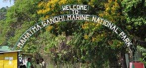 Mahatma Gandhi Marine National Park, Andaman Nicobar
