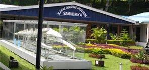Samudrika Museum, Andaman Nicobar
