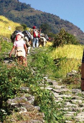 Trekking in Andaman